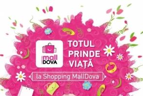 Totul prinde viata la Shopping MallDova. Cum au fost surprinsi cumparatorii de sarbatori