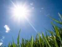 Vara incepe in forta. Ce maxime anunta meteorologii in urmatoarele 7 zile