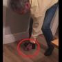 Acest barbat urca pe un ou si nu il sparge! Ce se intampla o secunda mai tarziu e incredibil - VIDEO