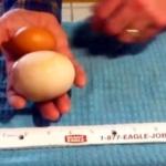 A vrut sa-si faca o omleta, dar a avut parte de o descoperire bizara. Ce a descoperit atunci cand a spart oul - VIDEO