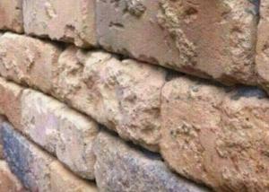 Vezi doar un zid de caramida? Adevarul te va surprinde. Iluzia optica care a pus in incurcatura milioane de oameni - FOTO