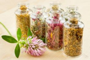 Plante cu beneficii impresionante pentru sanatatea ta. Le ai in bucatarie si nu stii ce efect miraculos au - FOTO