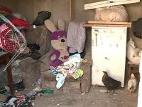 Moldovenii isi dau jumatate din bani pe mancare, si totusi exista multi copii in tara noastra care sufera de malnutritie - VIDEO