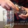 Ce se intampla daca tii un ou in otet doua zile! Experimentul care  a devenit viral - VIDEO
