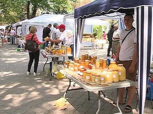 """Apicultorii si-au expus astazi cele mai bune produse in scuarul Operei: """"Avem patru tipuri de miere, propolis, fag"""" """"Preturile variaza, de salcam 100 de lei, de mai 90, de flori 70 de lei"""" - VIDEO"""