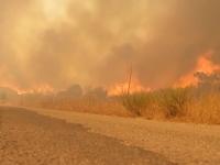 Incendii devastatoare in Portugalia. 3 localitati au fost evacuate de salvatori, iar sute de oamenii au fugit din calea flacarilor - VIDEO