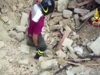 Miracol in urma cutremurului devastator din Italia. Pompierii au scos de sub daramaturi o pisica, la 16 zile de la producerea seismuluI - VIDEO