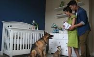 O sarcina in 60 de secunde. Un viitor tatic si-a fotografiat zilnic sotia insarcinata, insa la urma a descoperit ceva surprinzator - VIDEO