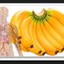 Daca esti un iubitor de banane iata 10 LUCRURI pe care sigur nu le stiai despre ele! Nr.6 este foarte important!