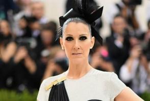 Gata cu doliul! Celine Dion revine la tinutele provocatoare - FOTO