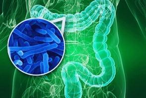 Antibioticele puternice impiedica si dezvoltarea de noi celule ale creierului