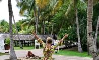 Extrem de sexy, pe o plaja din Cuba! Vezi ce vedeta pozeaza provocator - FOTO