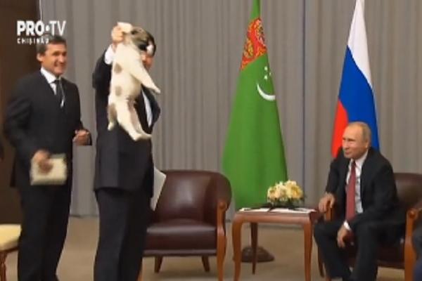 Vladimir Putin, aflat in aceste zile la Soci, a primit un caine. Cadoul i-a fost facut de presedintele Turkmenistanului - VIDEO