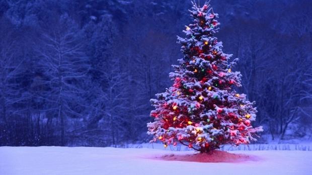 In aceasta iarna, Chisinaul se bucura de mai multi pomi de Craciun! Daca nu iti place cel din PMAN sau de pe strada 31 august, poti sa-l admiri pe cel de-al treilea - VIDEO