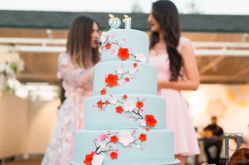 Surpriza neasteptata la Cherry Blossom Party! Un tort imens, decorat in nuantele primaverii, pentru omagiata serii, editorul Cristina Meriacri - VIDEO